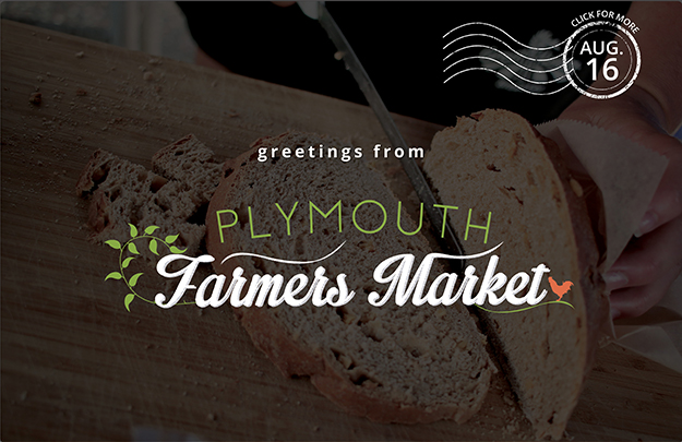 Download the Aug. 16, 2017 Plymouth Farmers Market Newsletter (PDF)