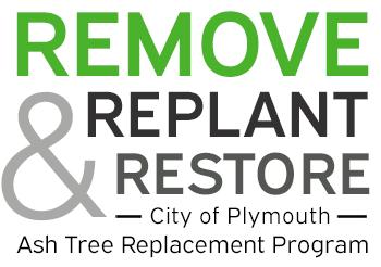 "Emerald Ash Borer Tree Replacement Program graphic with slogan, ""Remove, Replant, Restore."""
