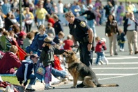 Police canine at parade