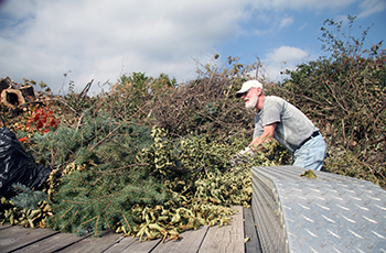 Man throwing leaves and brush into a pile at the Plymouth Yard Waste Site
