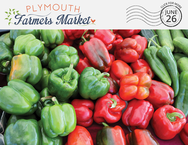 View the June 26, 2019 Plymouth Farmers Market Newsletter (PDF)