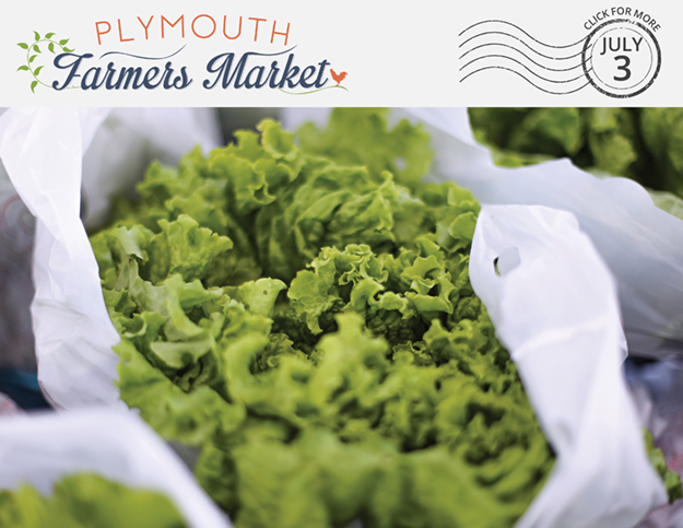 View the July 3, 2019 Plymouth Farmers Market Newsletter (PDF)