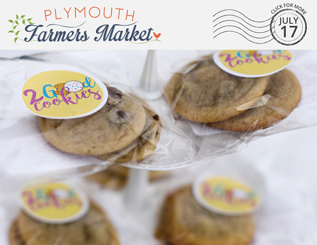 View the July 17, 2019 Plymouth Farmers Market Newsletter (PDF)