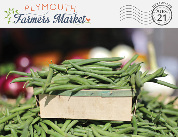 View the Aug. 21, 2019 Plymouth Farmers Market Newsletter (PDF)