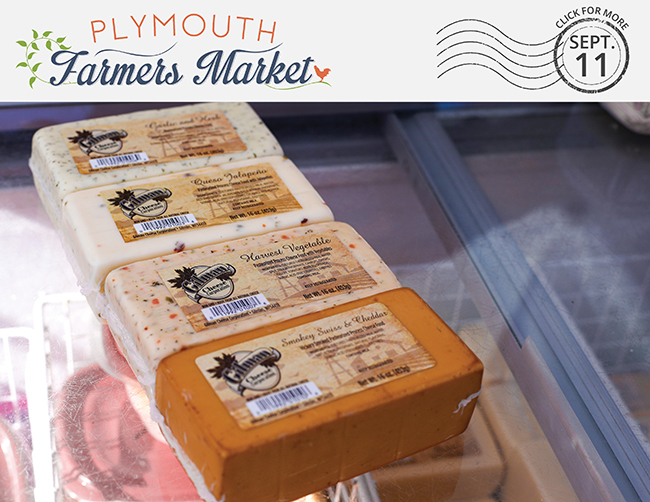 View the Sept. 11, 2019 Plymouth Farmers Market Newsletter (PDF)