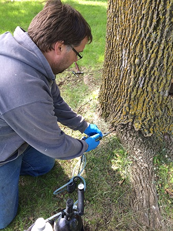 For the past two years, the City of Plymouth has been proactively treating larger, healthy ash trees in city parks and boulevards to prevent the spread of Emerald Ash Borer. The first case of EAB in the City of Plymouth was confirmed Sept. 15 in the southeastern part of the city, near Medicine Lake.