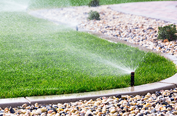 Irrigation lawn watering