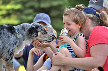 Girl petting dog and smiling at Plymouth's Bark in the Park event